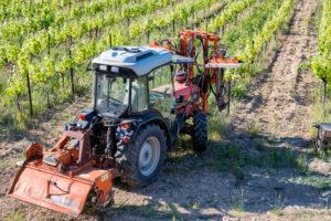 Roaix, Vaucluse, Provence, Provence-Alpes-Côte d'Azur, France, vineyards at Roaix, Arrondissement Carpentras,