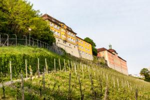 Meersburg, Baden-Wuerttemberg, Lake Constance, Germany, the state vineyard Meersburg
