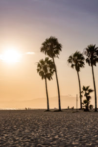 Venice Beach, Los Angeles, Kalifornien, USA