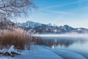 Winter landscape with hoarfrost in Bavaria at the Kochelsee
