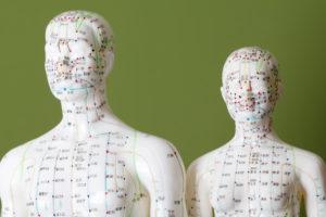 Acupuncture, model, figure, TCM,