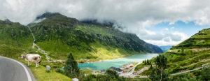 Cow, roadside, Vermuntstausee (reservoir), Austria, Vorarlberg, Silvretta,