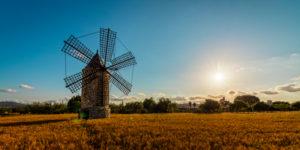 Spain, the Balearic Islands, Island of Mallorca, Montuiri, windmill, the suns, back light, field, light, sunshine,