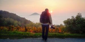 Photographer moody scenery, Italy, Veneto, Colli Euganei, National Park, nature reserve