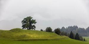 Landscape in Schöllang near Orbestdorf in the Allgäu