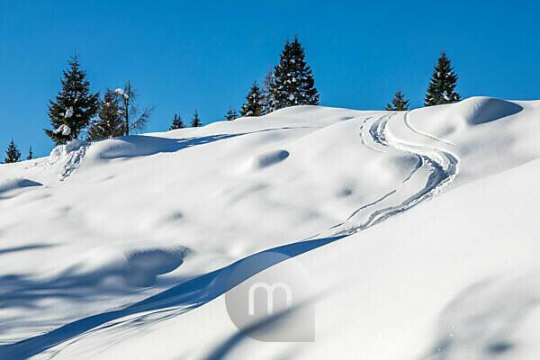 trails of ski mountaineers in the fresh snow, dolomites agordine, agordino, belluno, veneto, italy