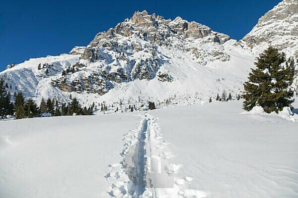 ski mountaineering tracks towards the menegazzi bivouac, area of the croda granda, pale di san martino, agordino, belluno, veneto, italy
