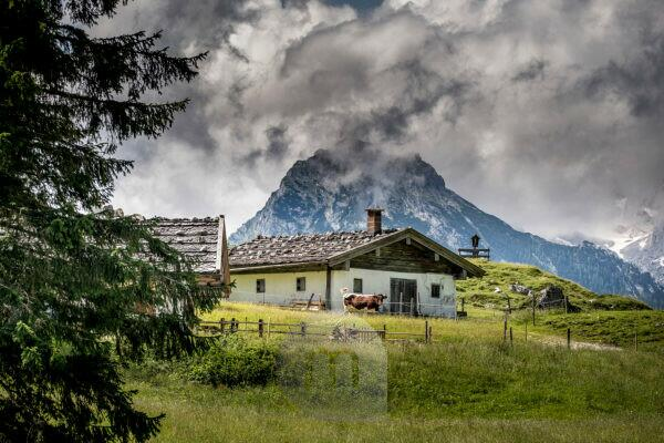 Alpine summer in Bavaria, Germany, Bavaria, Alpine summer, Alm, Ramsau, Ramsau bei Berchtesgaden, mountain climbing village, Mordaualm, cow, cow with horns, Pinzgauer, alpine romance, mountains, meadows, rural scene, Berchtesgaden, Berchtesgadener Land, landscape, mountains, outdoors , Travel,