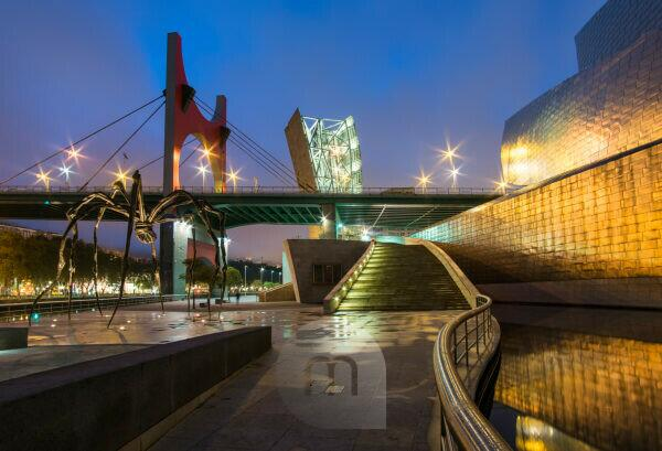 "Spain, Bilbao, Guggenheim Museum, spider sculpture ""Maman"", night shot"