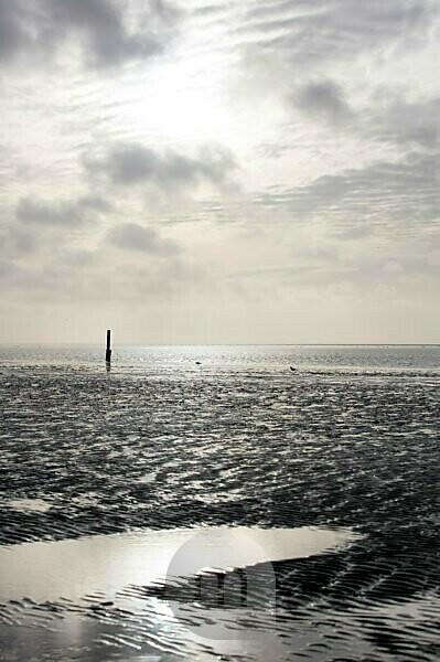 Wadden Sea, evening, dusk, blue hour, Norddeich, north, North Sea, East Frisia, Lower Saxony, Germany,