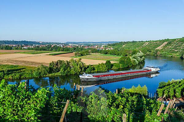 Deutschland, Baden-Württemberg, Kirchheim, Neckar, Flussschiff