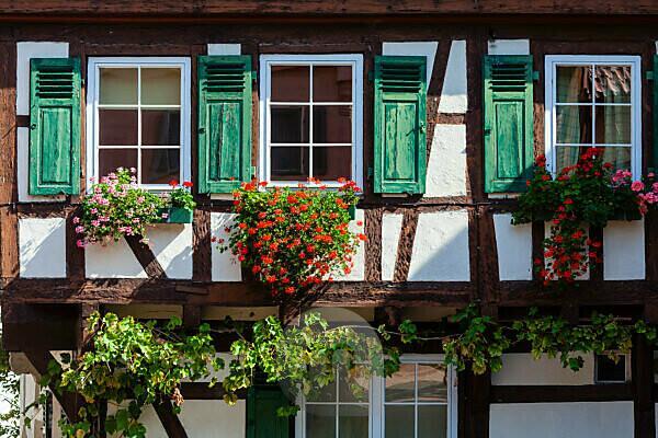Fachwerk, Haus, Blumen, Wohnhaus, wohnen