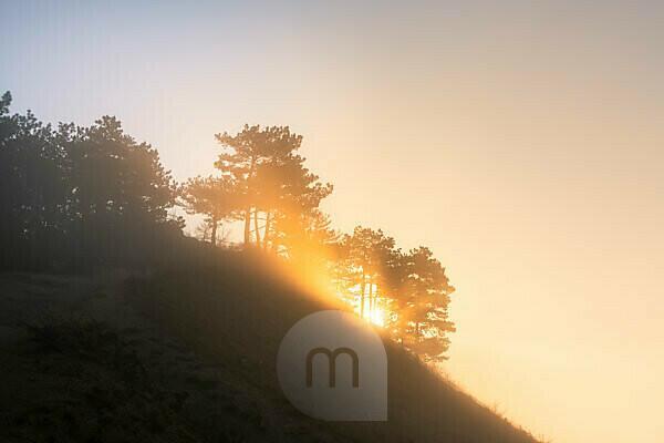 Sonnenaufgang über dem Jenzig bei Morgennebel