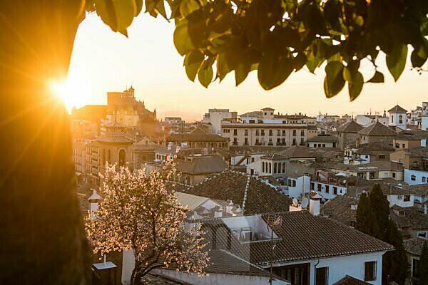 Spanien, Granada, Mirador de la Churra, Blick zum Stadtviertel Albaicin, Baumblüte, Sonnenstrahlen