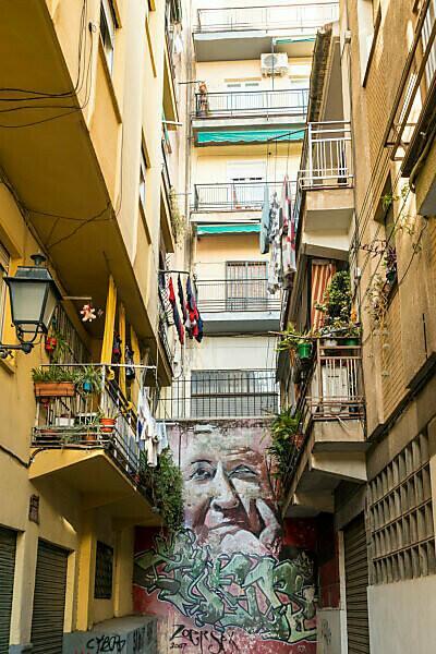 Spain, Granada, Realejo, street art by artist Raul Ruiz, portrait of a woman, back yard