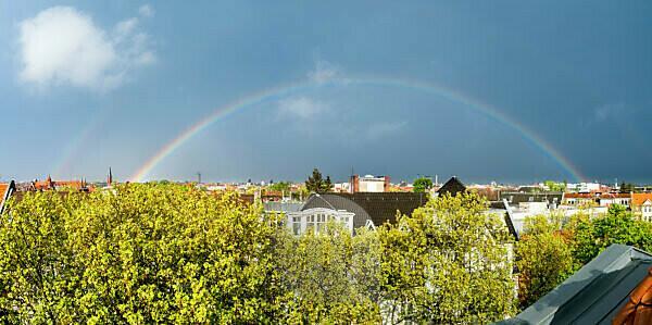 Berlin, street, top floor, linden trees, plane trees, complete rainbow