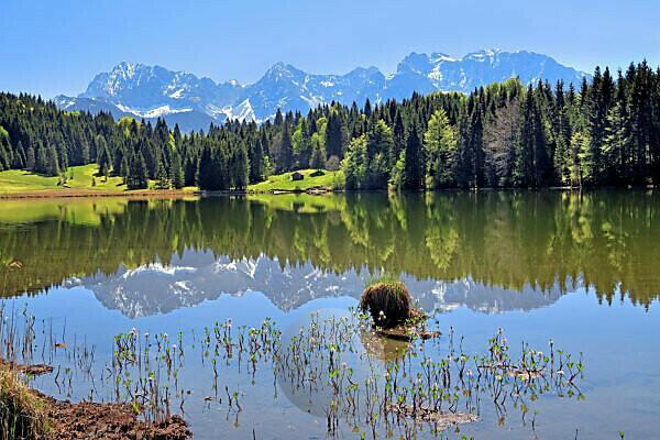 Geroldsee ( Wagenbrüchsee ) beim Weiler Gerold im Frühling gegen Karwendelgebirge, Krün, Werdenfelser Land, Oberbayern, Bayern, Deutschland