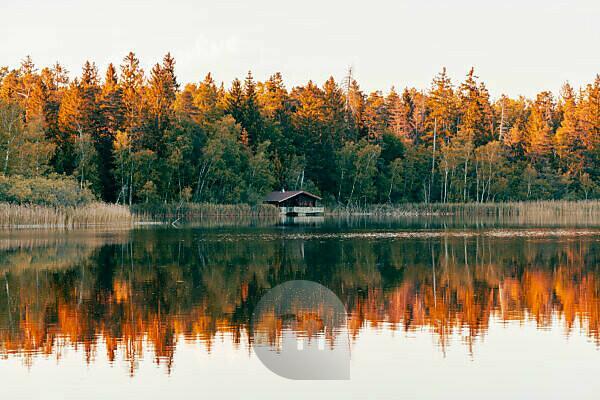 Haus am See, Schreckensee, sunset, Wolpertswende, Baden-Württemberg, Germany, Europe