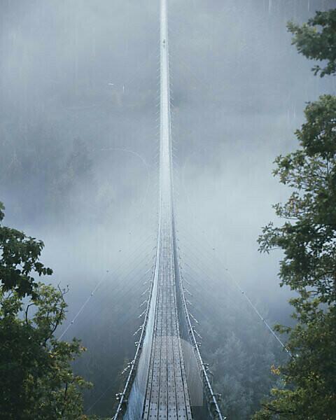 Die Hängeseilbrücke Geierlay am Morgen mit Nebel im Hunsrück. Eine Person befindet sich am Ende der Brücke