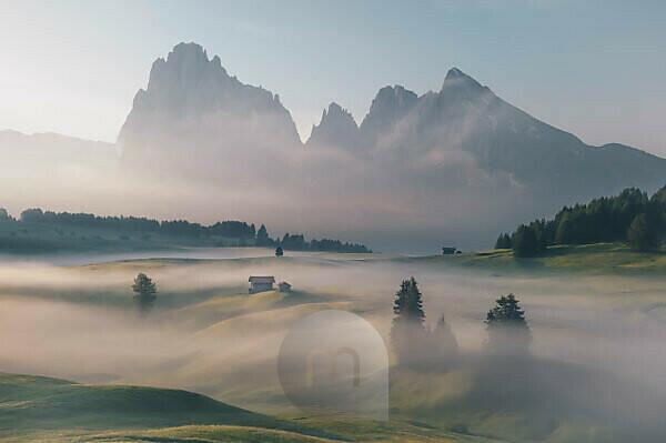 Sonnenaufgang über der Seiser Alm / Alpe di Siusi in den Dolomiten, Südtirol, Italien. Nebel verschleiert die einzelnen Waldabschnitte und Almhütten.
