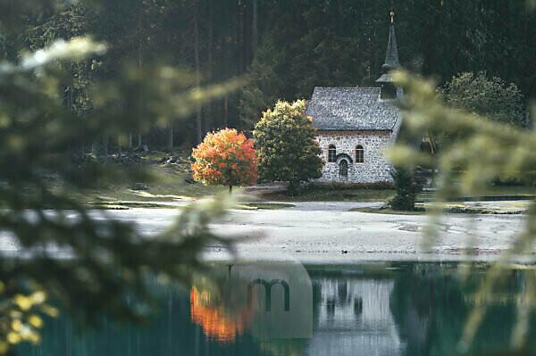 Eine Kirche am Lago die Braies / Pragser Wildsee welche sich in diesem See spiegelt. Neben der Kirche befindet sich ein Baum mit den ersten roten Herbstblättern und sticht hervor. Südtirol, Dolomiten, Italien