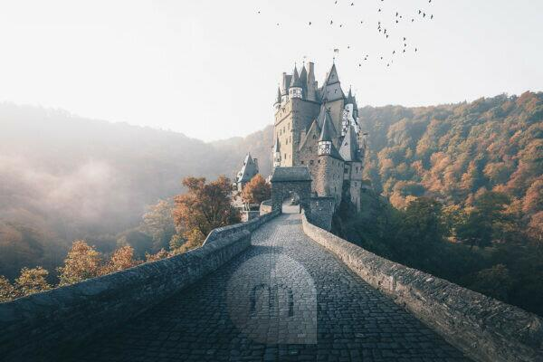 Eltz Castle with a flock of birds and fog in sunrise, autumn, Hunsrück