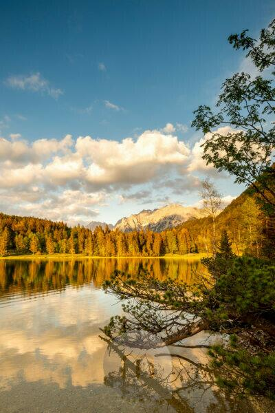 The evening sun illuminates the shores of the Ferchensee, above Mittenwald, with the Karwendel in the background and a branch in the foreground. Light clouds and otherwise blue sky underline the scenery.