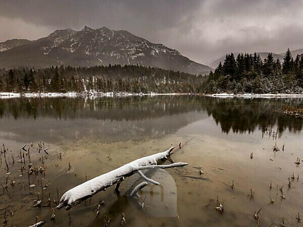 Winter am Stausee Krün am frühen Morgen, bei Wolken und Schnee