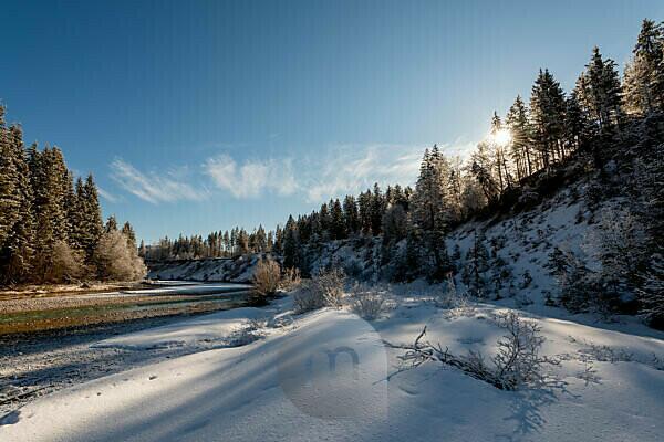 Sonnenstern an der Isar bei Vorderriss und Wallgau im Karwendel im Winter bei Neuschnee