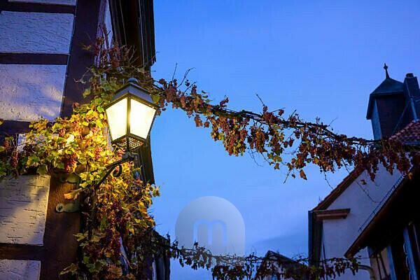 Germany, Rhineland-Palatinate, Southern Palatinate, Gleiszellen-Gleishorbach, street lamp in Winzergasse.