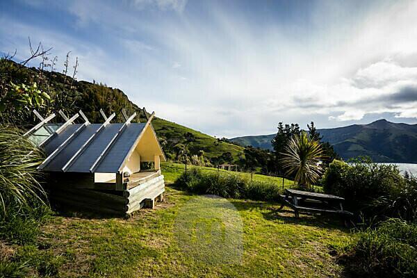 Sleep under the stars, wooden hut in Akaroa
