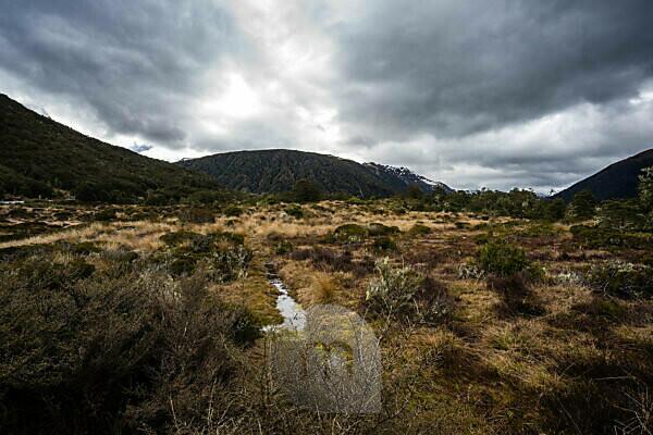 Berglandschaft und Vegetation am Highway 7, Südinsel Neuseeland