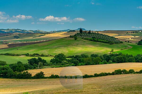 Europe, Italy, San Quirico, Agriturismo Poggio Covili, Tuscany, Tuscan Landscape, Castiglione d'Orcia, Province of Siena,