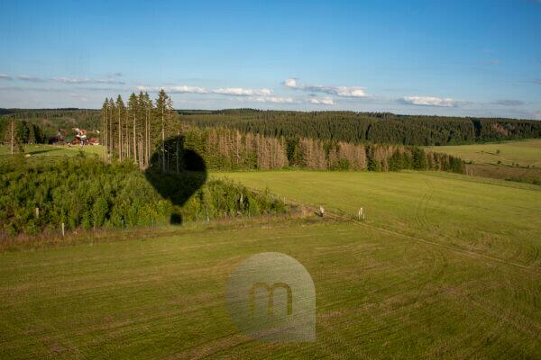 """Germany, Saxony-Anhalt, fir, conifers """"grow"""" from the shadow of a hot air balloon."""