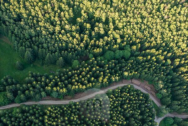 Wege durch den Harz