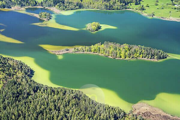 Luftaufnahme von den Osterseen, Iffeldorf, Oberbayern, Bayern, Süddeutschland, Deutschland, Europa