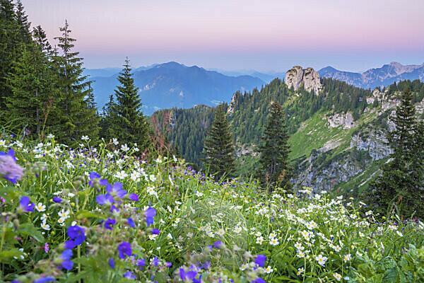 Blick vom Laber zum Ettaler Manndl (1636 m), Ammergauer Alpen, Oberammergau, Oberbayern, Bayern, Süddeutschland, Deutschland, Europa