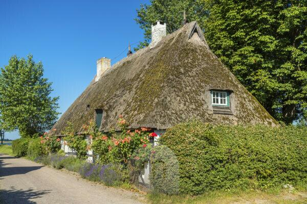 Thatched house in Sieseby, Thumby, Schleswig-Holstein, Germany