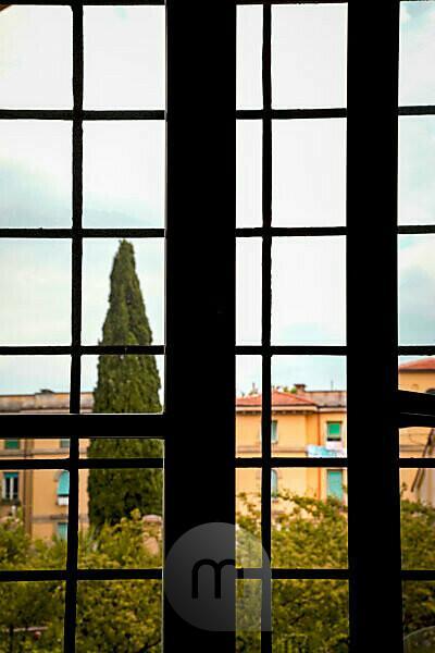 Haus, Baum, Ausblick, Toskana, Italien, Pistoia