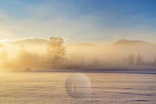 Fog in the foothills of the Alps, Penzberg, Pfaffenwinkel, Upper Bavaria, Bavaria, Southern Germany, Germany, Europe