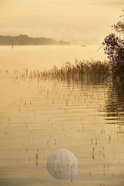Germany, Mecklenburg-Western Pomerania, Schwerin, Lake Schwerin, morning mood