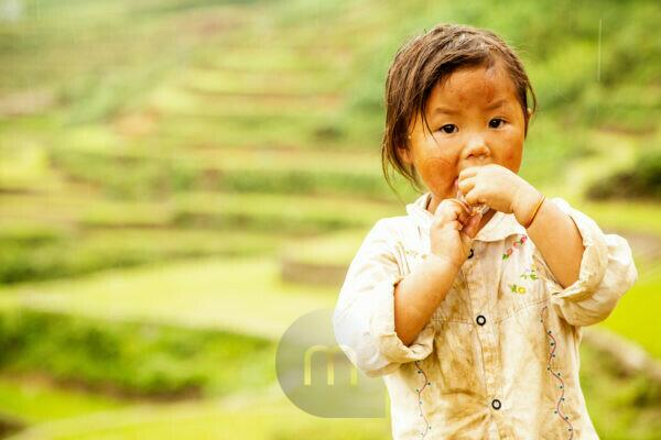 Rice fields, children in Vietnam