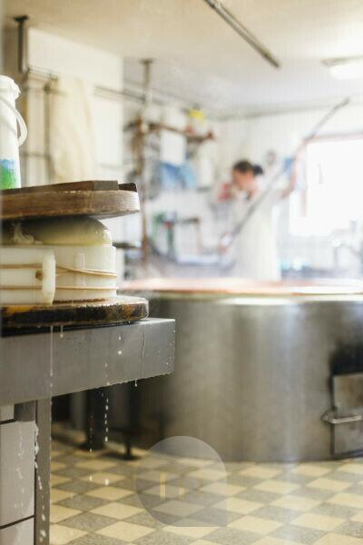 dairymaid processes fresh milk to aromatic alp cheese, report: from cooking the milk and adding rennet until having the cheese loaf which get to ripe in the cellar,