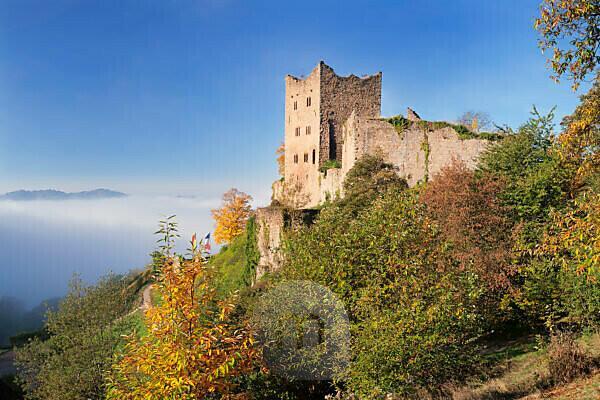 Ruin Schauenburg, Oberkirch, Black Forest, Baden Württemberg, Germany
