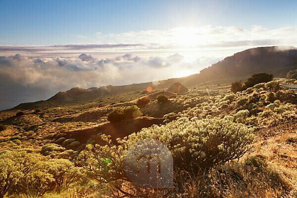 Blick auf die Südküste bei Sonnenuntergang, UNESCO Biosphärenreservat, El Hierro, Kanarische Inseln, Spanien