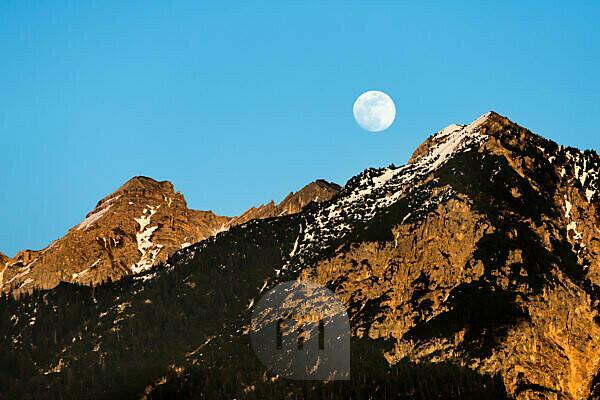 Mondaufgang über der Soierngruppe im Karwendelgebirge der bayrischen Alpen, Deutschland.