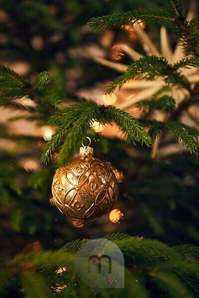 Christmas bauble on tree, Still life Christmas
