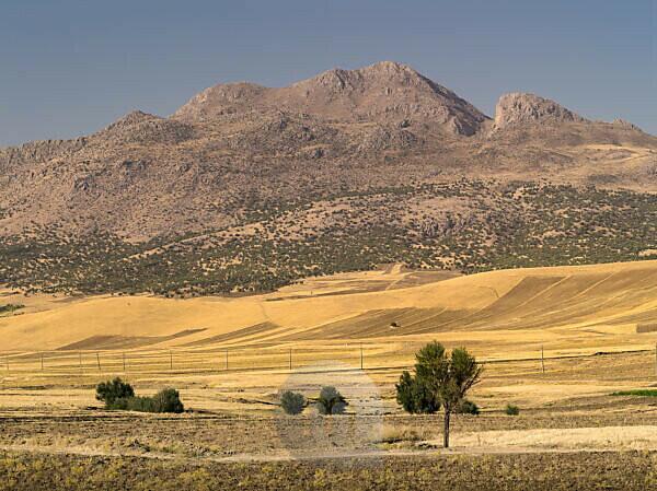Scenery in Chuzestan in Iran