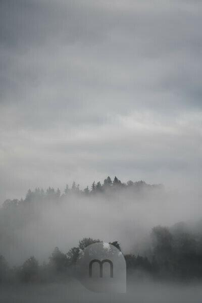 Black Forest, mountains, forest, rain, fog