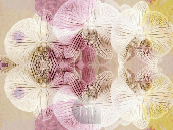 photographic flowers ornament,